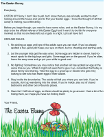 Easter Bunny Egg Hunt Rules